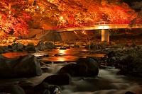 愛知県 紅葉の香嵐渓ライトアップと巴川