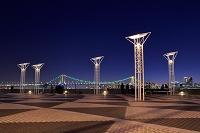 東京都 晴海客船ターミナルの夜景