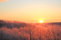 北海道 樹氷と日の出