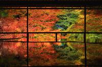 日本 京都府 瑠璃光院 瑠璃の庭のライトアップ