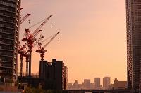 東京都 晴海 工事現場のクレーン