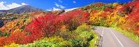 福島県 紅葉の磐梯吾妻スカイラインより天狗の庭