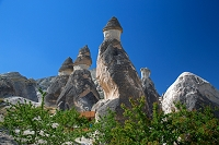 トルコ カッパドキア パシャバー キノコ岩