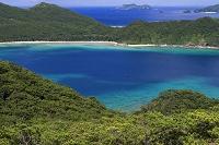 沖縄県 座間味島 安護の浦