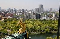 大阪府 大阪城 鯱瓦と街並み