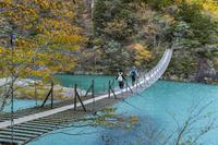 静岡県 秋の寸又峡夢の吊橋