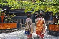 京都府 祇園白川巽橋の変身舞妓さん