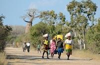マダガスカル 頭に荷物を乗せて水を運ぶ子ども