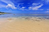 沖縄県  南風見田の浜 西表島