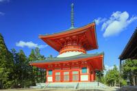 和歌山県 根本大塔 壇上伽藍