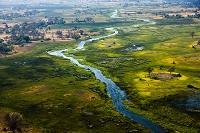 ボツワナ オカバンゴデルタ 湿地帯