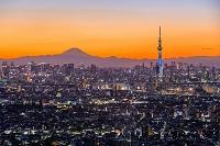 東京スカイツリーと富士山 千葉県 市川市
