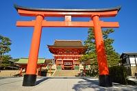 京都府 伏見稲荷大社の楼門