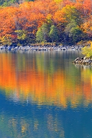 長野県 志賀高原 紅葉の琵琶池