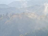 岡山県 備中松山城と霧