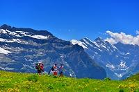 スイス アルプスと高山植物と観光客