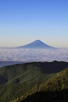 山梨県と長野県の県境 国師ヶ岳から望む朝の夏富士と雲海