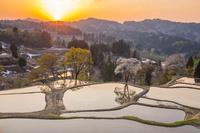新潟県 夕暮れの儀明の棚田