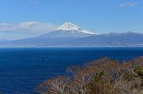 静岡県 大瀬崎より富士山