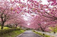 茨城県 富谷山ふれあい公園