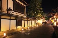 京都府 東山花灯路 ライトアップされたねねの道