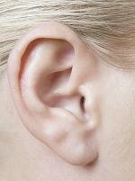外国人女性の耳
