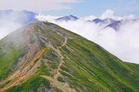 長野県 爺ケ岳南峰と北アルプスの山々