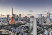 東京都 日没後の東京タワーライトアップとビル群