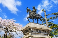 宮城県 桜と伊達政宗像