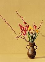 生花 紅梅と水仙