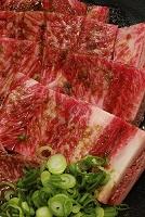 焼き肉用牛骨付きカルビ