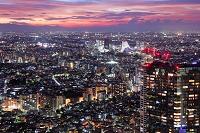 東京都 都庁展望室から望む夜景