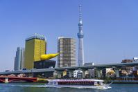 東京都 屋形船と東京スカイツリー
