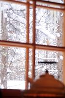 長野県 雪景色の見える窓辺