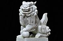 千葉県 印西市 熊野神社 狛犬(阿形)
