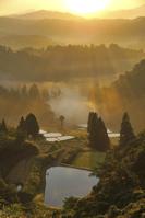 新潟県 朝もやに包まれた棚田と山並み