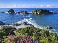 和歌山県 ブーゲンビリア咲く枯木灘海岸と陸の黒島