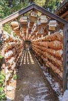 埼玉県 川越氷川神社 絵馬のトンネル