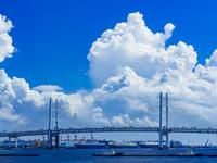 神奈川県 横浜ベイブリッジ