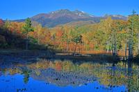 長野県 朝の乗鞍高原どじょう池と乗鞍岳