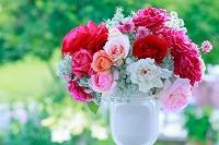 窓辺のバラの花