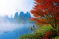大分県 金鱗湖紅葉