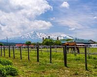 秋田県 ゆり高原ふれあい農場