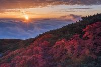 長野県 乗鞍岳 乗鞍エコーラインより雲海
