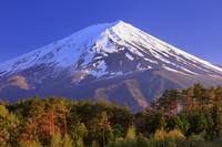山梨県 夕日に染まる富士山