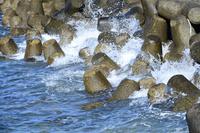 千葉県 波けしブロックに寄せる波