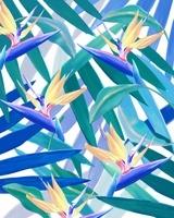 Lush, 2016 (digital illustration)