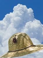 カブトムシとボウシと入道雲
