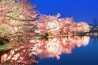 長野県 臥竜公園
