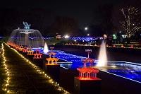 東京都 昭和記念公園 イルミネーション